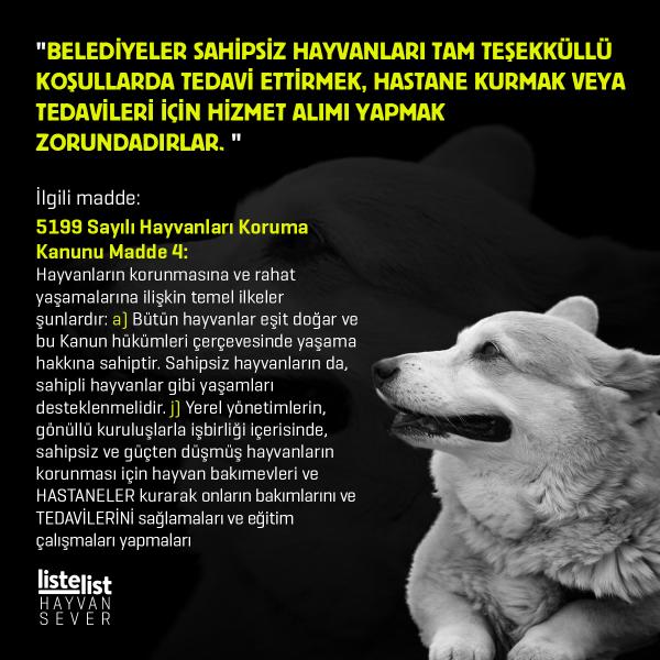 hayvan_haklari (2)