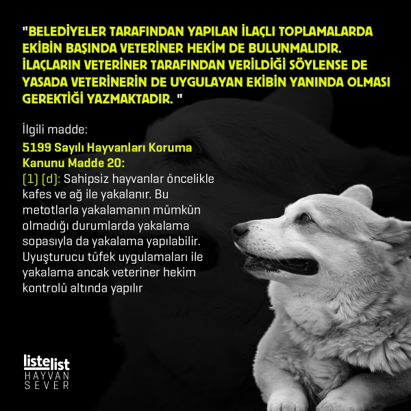 hayvan_haklari (3)