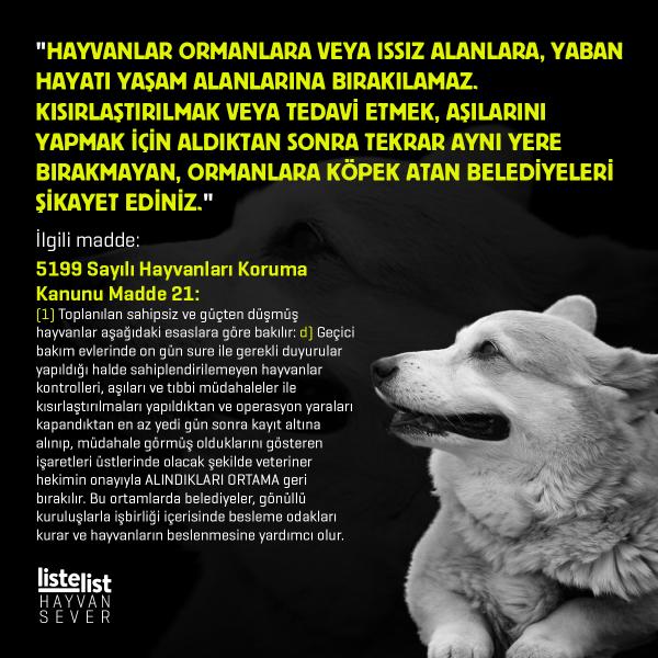 hayvan_haklari (4)