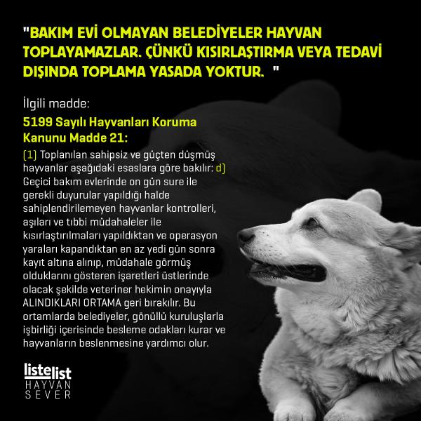 hayvan_haklari (5)