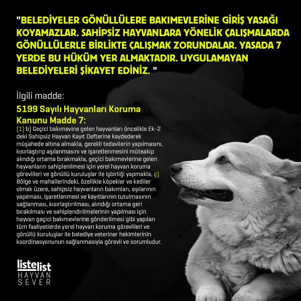 hayvan_haklari (6)