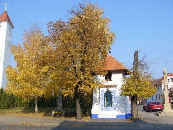 house-painting-90-year-old-grandma-agnes-kasparkova-29-59d33509f1496__700