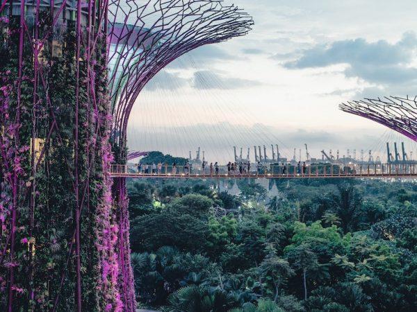 17-singapur
