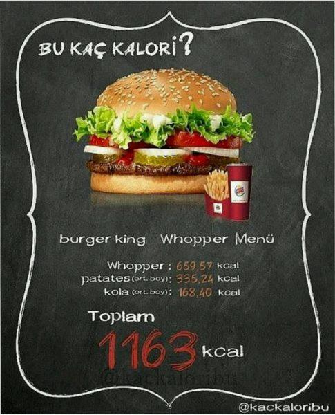 kalori-19