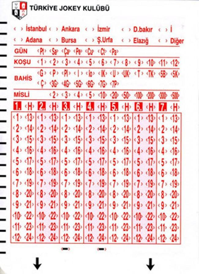 yenibahiskuponu-650x897