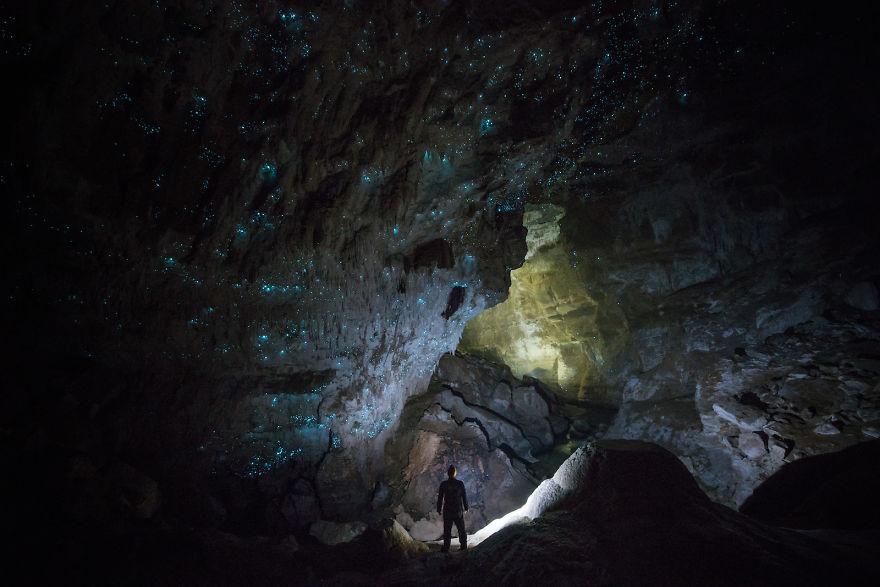 Hollow-Hill-Cave-Glowworms-SJP-15-5a332a8e160a3__880