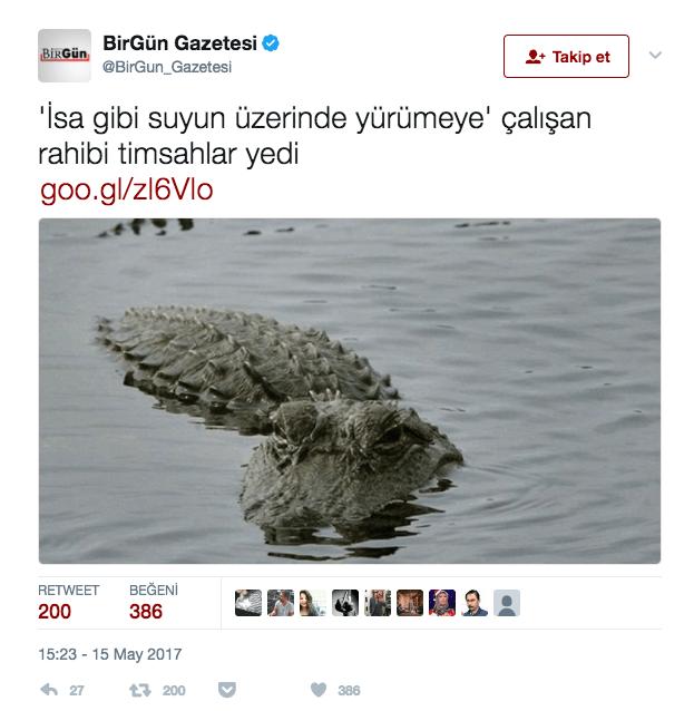 birgun-timsah