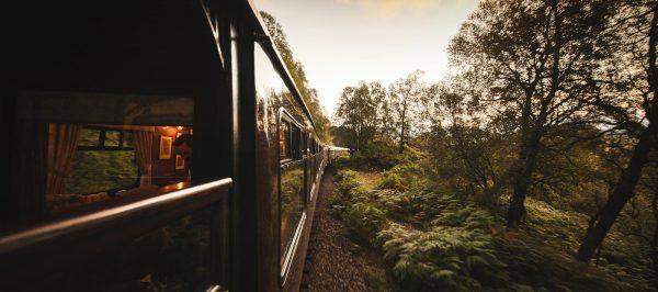 tren-3