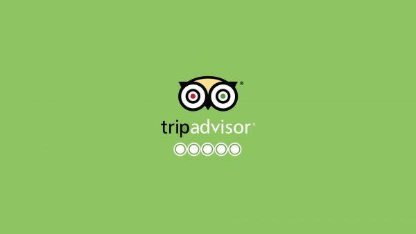 trip-advisor-wp-1920x1080