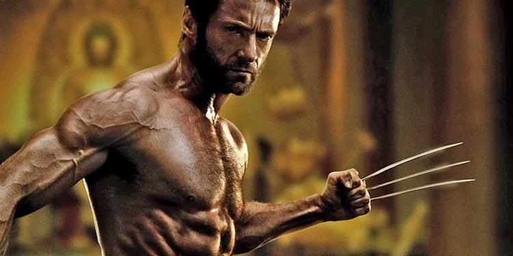 Kahramanın Sonsuz Yolculuğu Wolverine