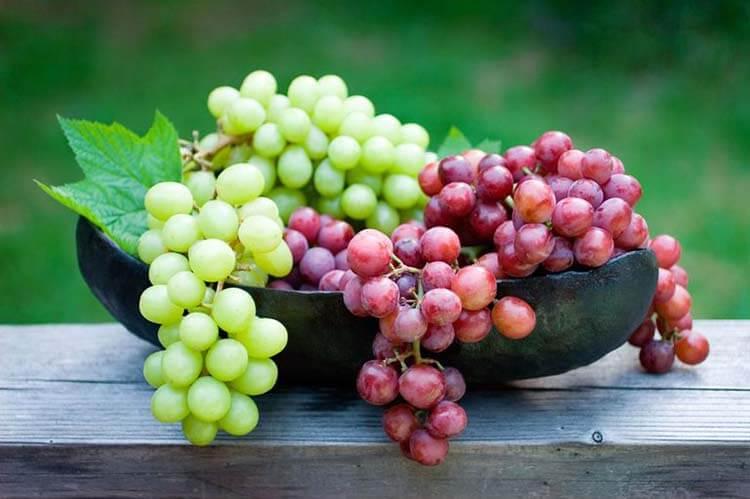 meyve şeker oranı üzüm