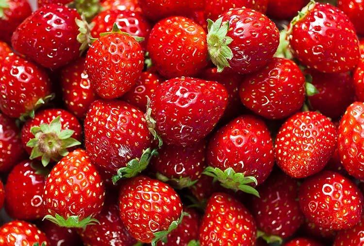 meyve şeker oranı çilek