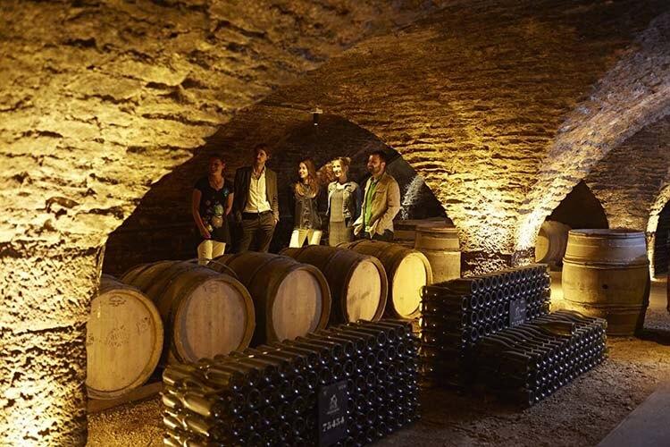 Şarap hakkında esneyebilen kurallar - Şarap yıllandıkça lezzetlenir