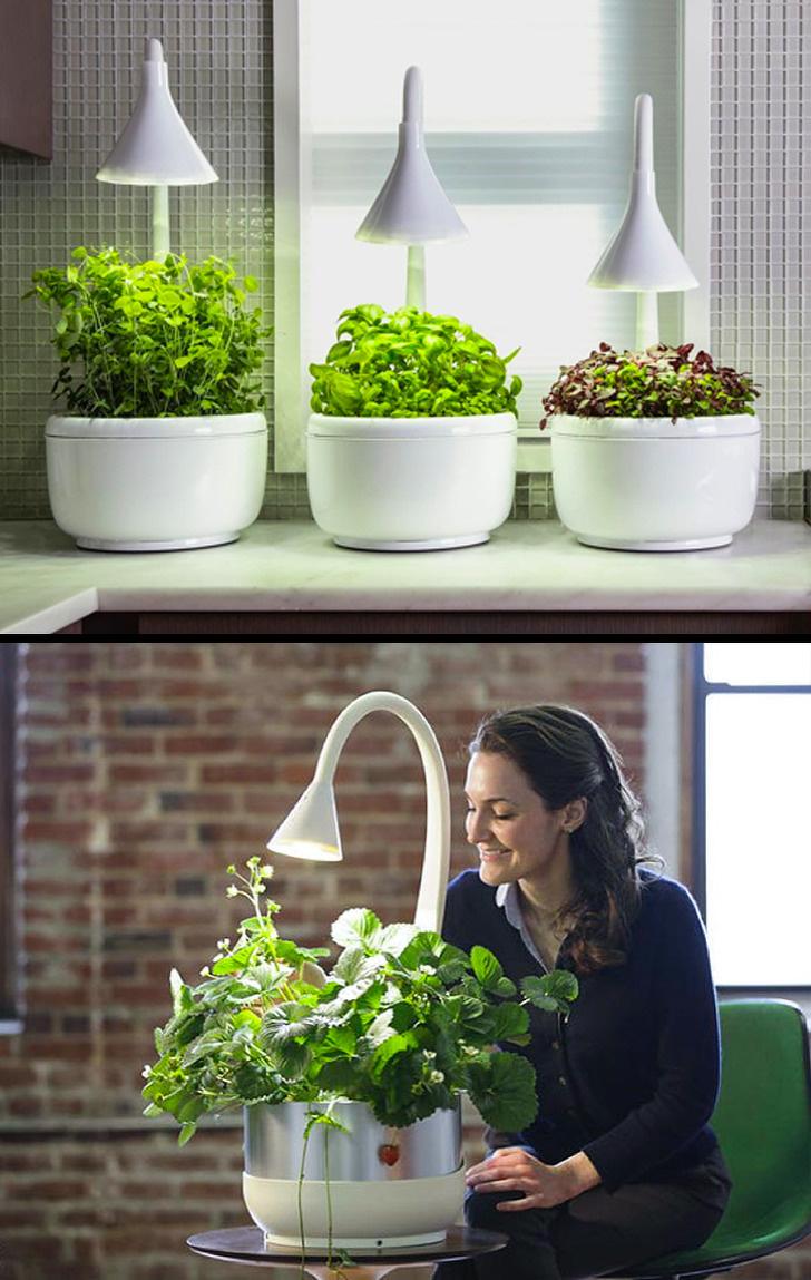 Akıllı Bahçe