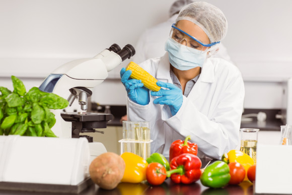 mor ekmek gıda teknolojisi