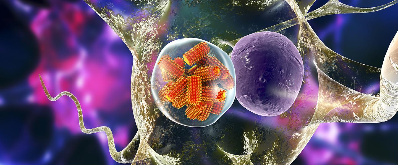 ölümcül virüsler