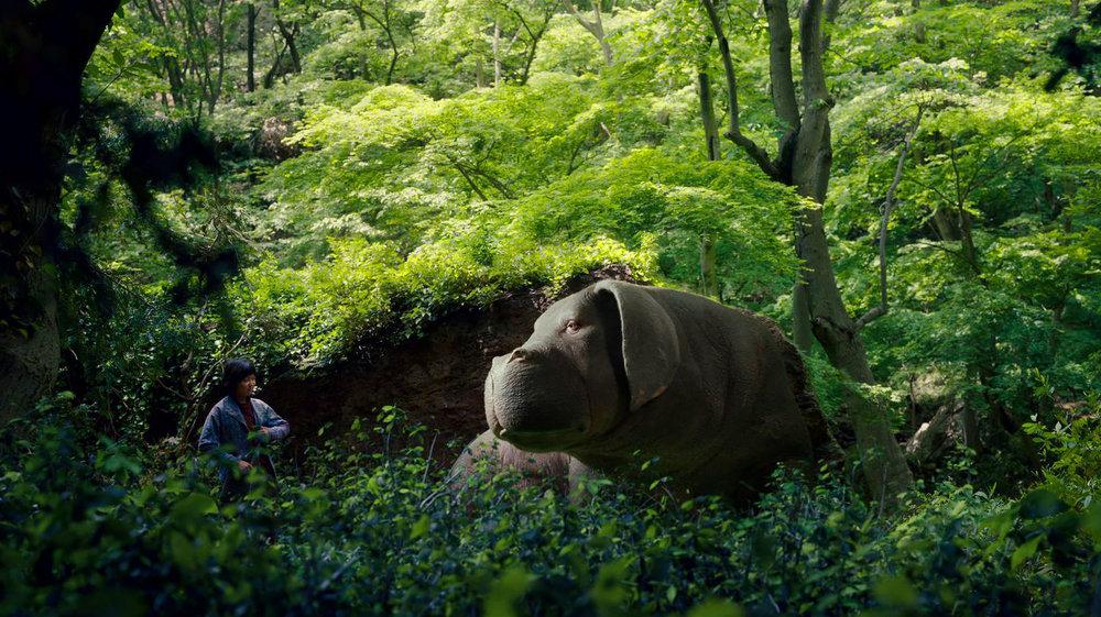 doğa temalı filmler