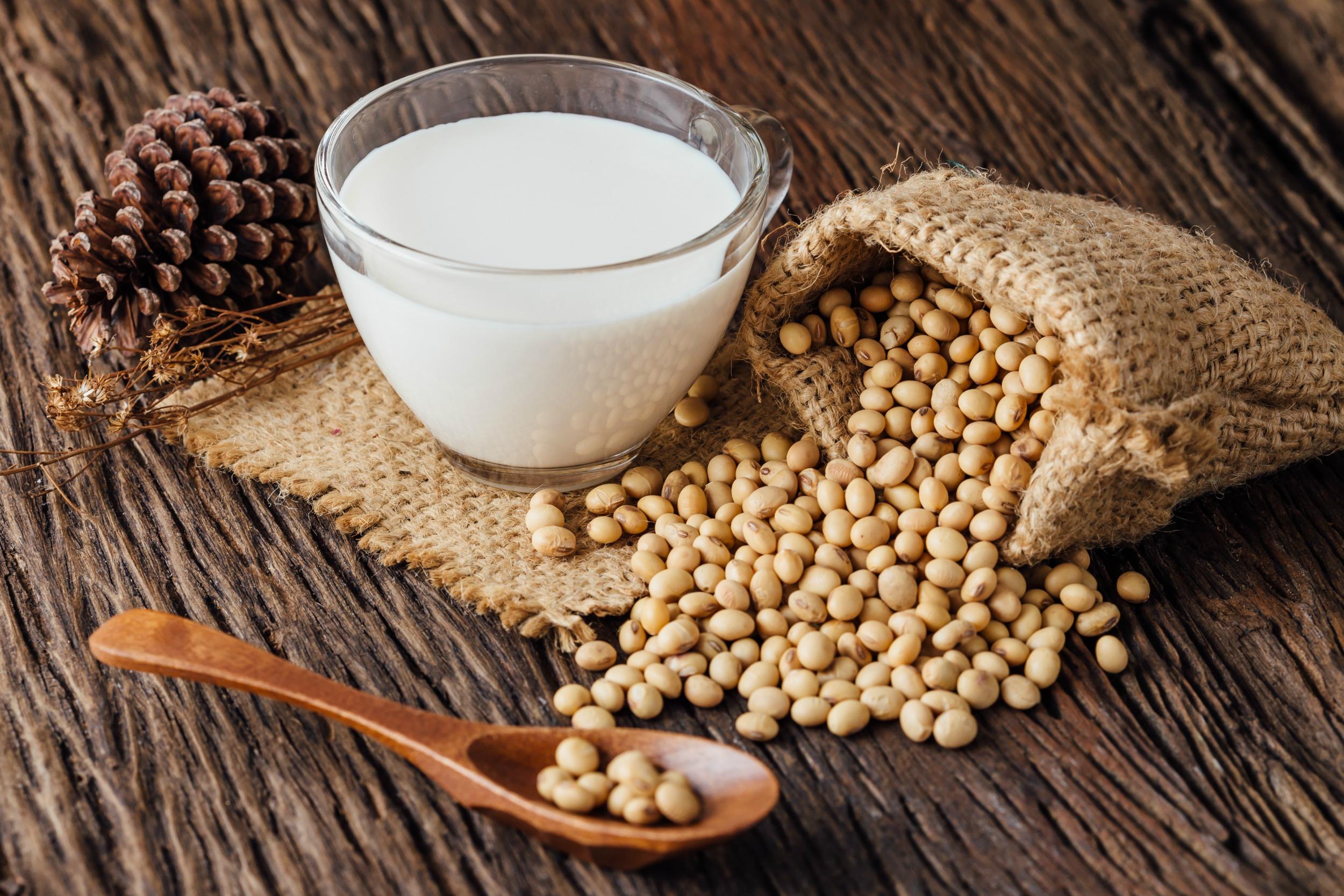 Soya sütü hakkında bilgiler