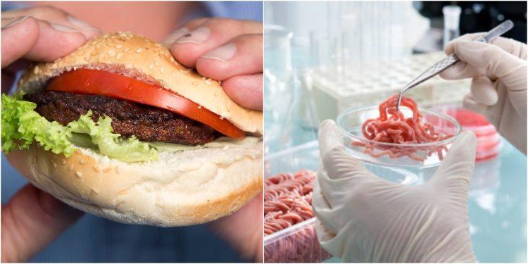 Sentetik Et: Gıdanın Geleceği Olarak Görülen Sentetik Et Nedir?