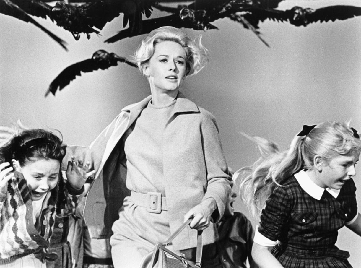 The Birds (1963) filmi