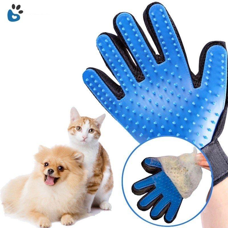 en uygun kedi malzemeleri