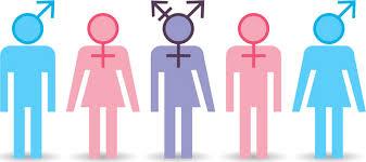 cinsiyet