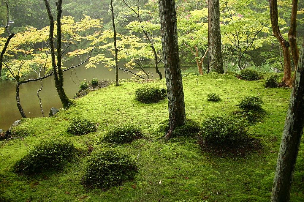 japon bahçeleri