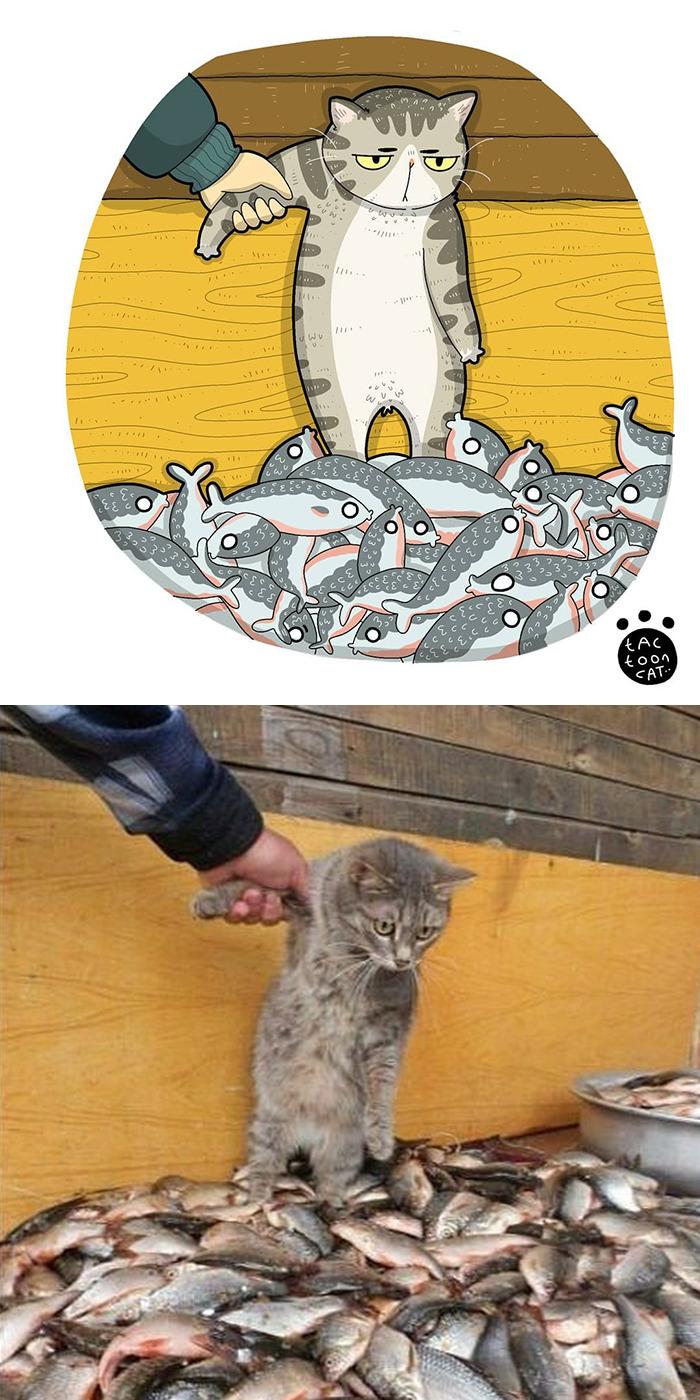 Tactooncat