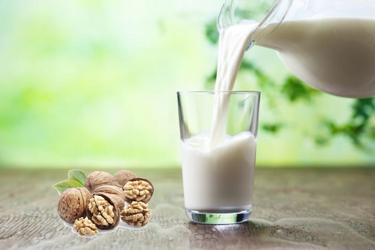 Ceviz sütü