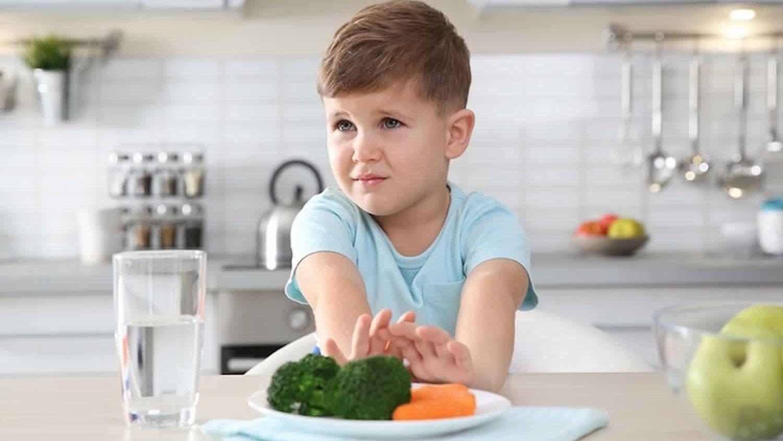 Gıda neofobisi