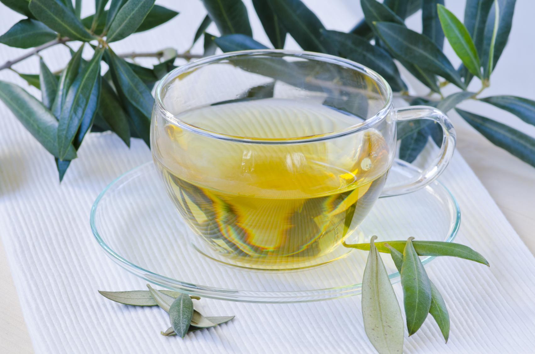 zeytin yaprağı çayı