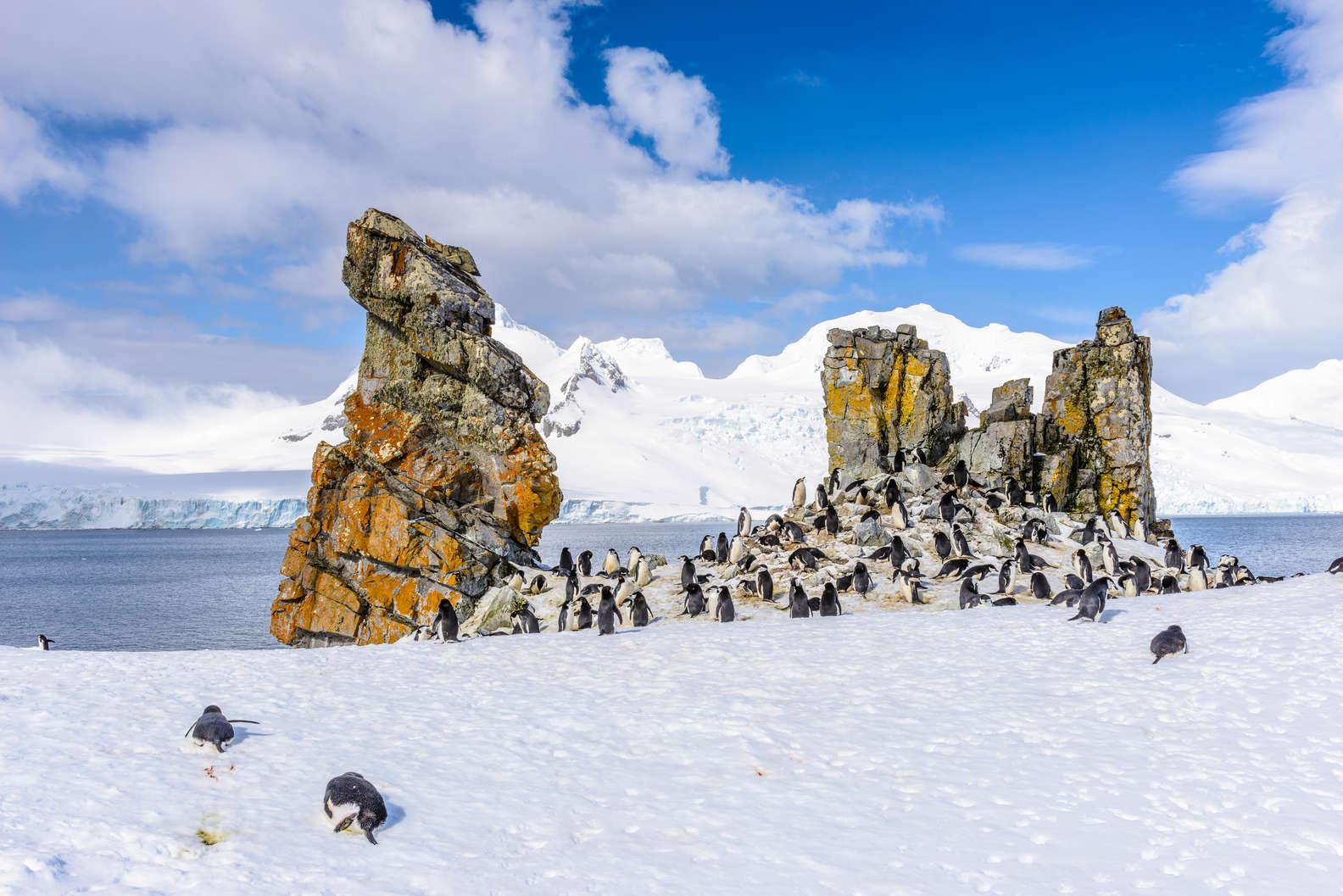 Güney Shetland Adaları