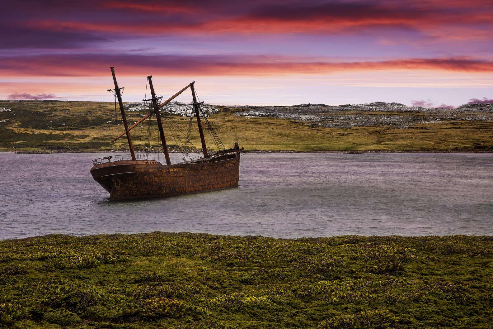 Falkland Adaları (Malvinas Adaları)