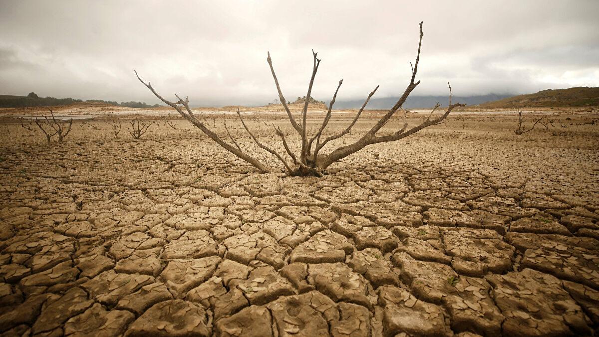 2021 felaketleri listelist black mirror nostradamus kitlesel kıtlık