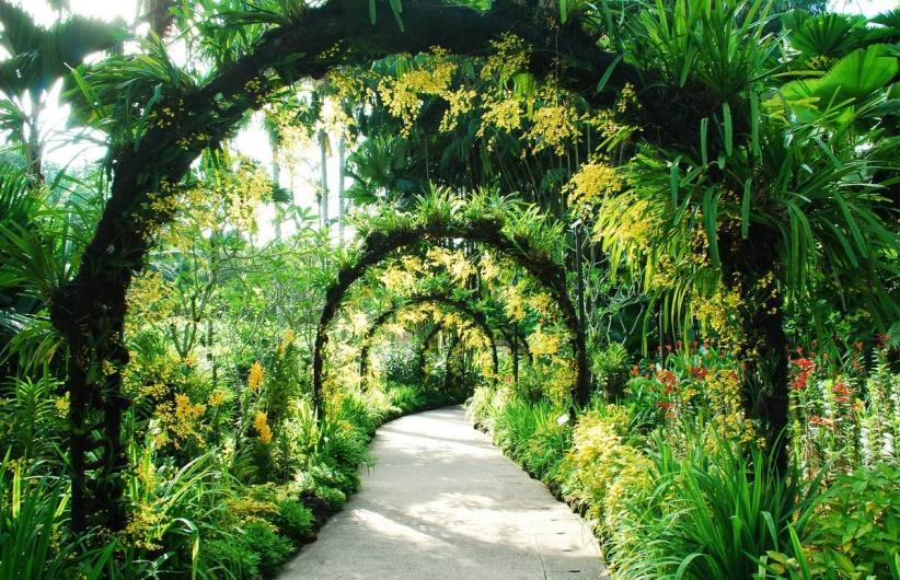 botanik parkları