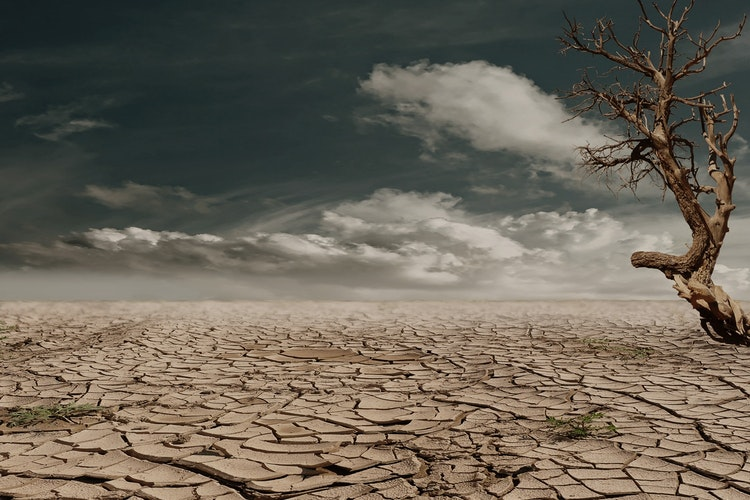 kuraklık