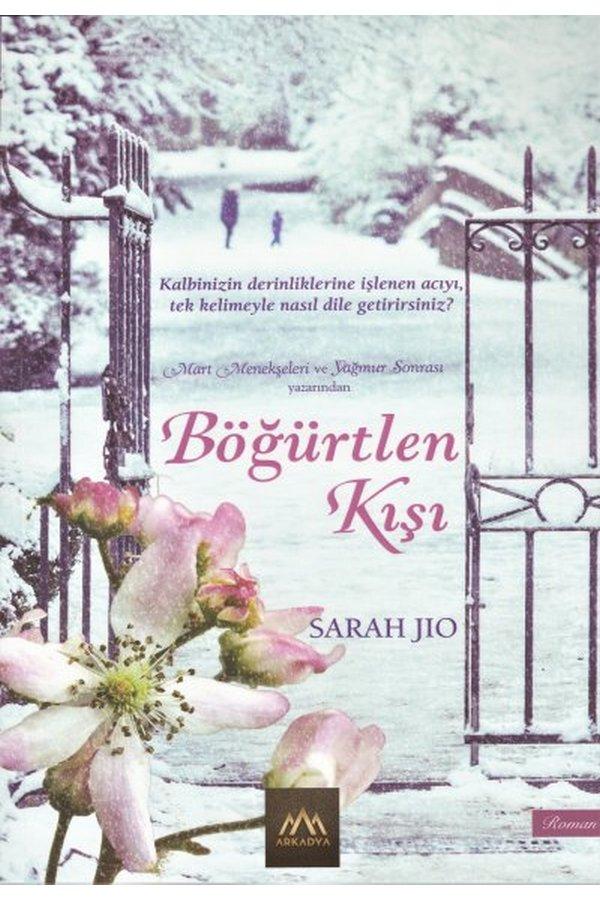 aşk romanları