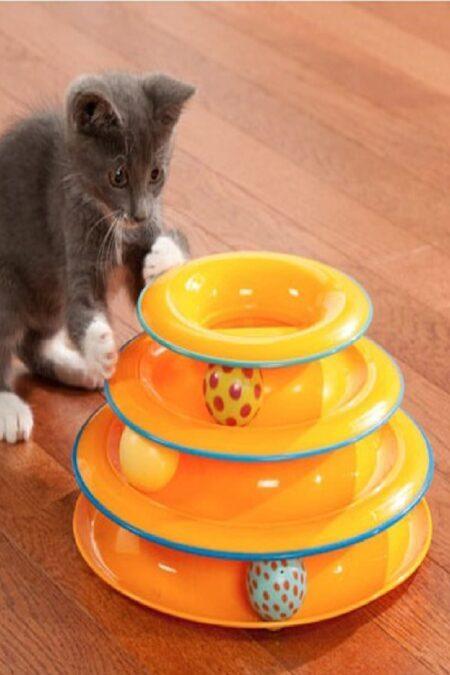 evcil hayvan oyuncakları