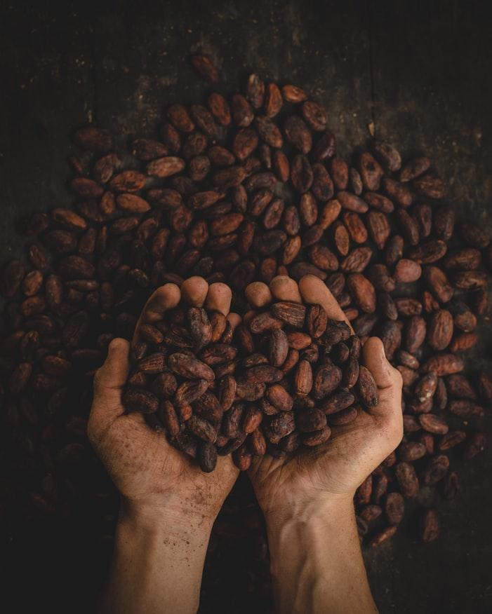 çikolatanın tarihi