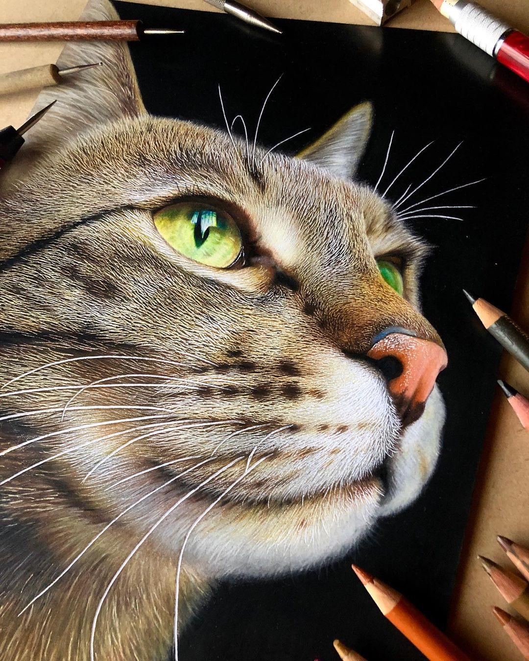 realistik kedi