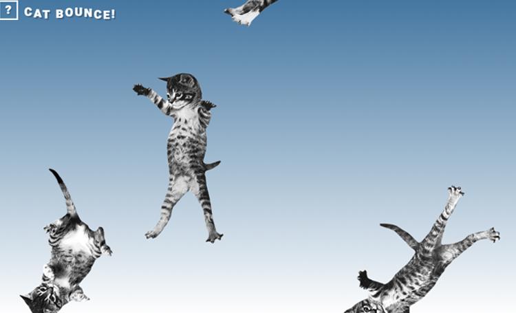ilginç web siteleri ilginç internet siteleri listelist cat bounce