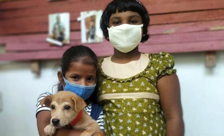 eğitim hayvansever sri lanka ingiltere wecare worldwide sokak köpeği listelist