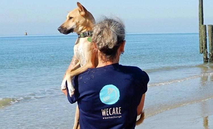 hayvansever sri lanka ingiltere wecare worldwide sokak köpeği listelist