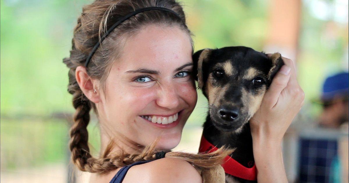 hayvansever sri lanka ingiltere wecare worldwide sokak köpeği listelist bbc belgesel