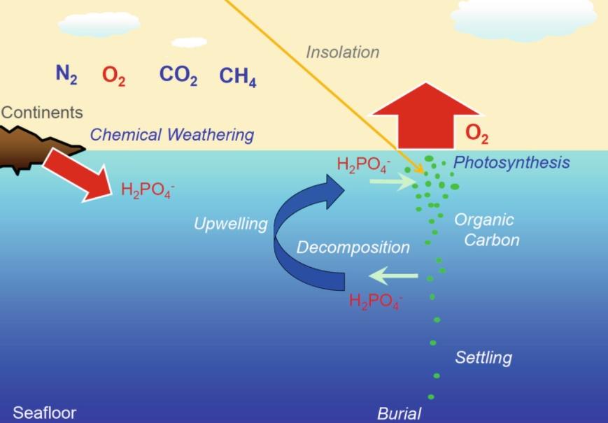 Büyük Oksidasyon Olayı