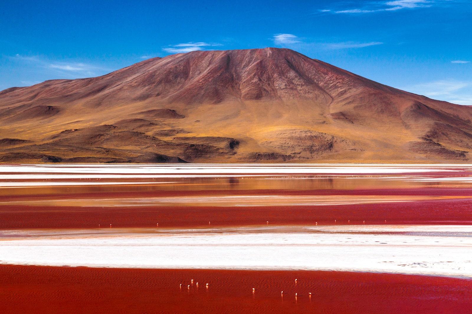 Laguna Colorada, Bolivya