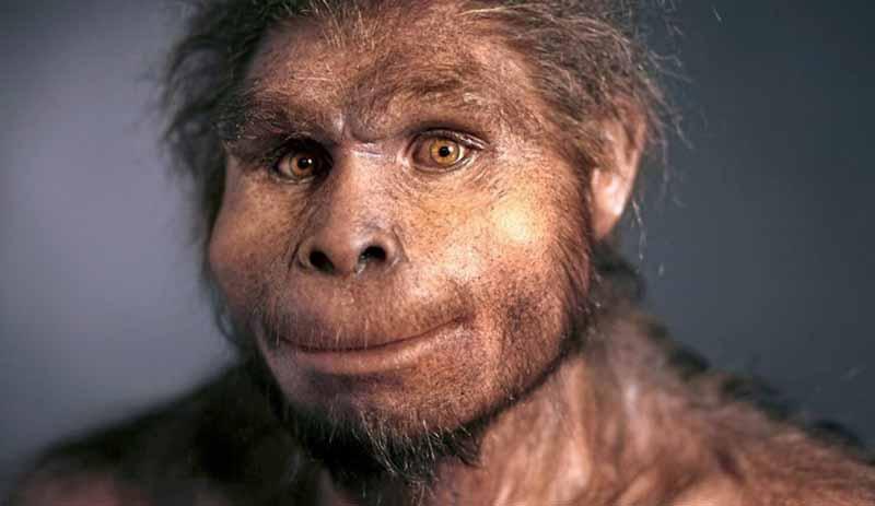 evrimin geleceği