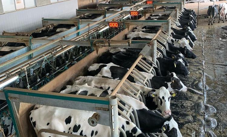 sencer solakoğlu feyz çiftliği tarım hayvancılık listelist