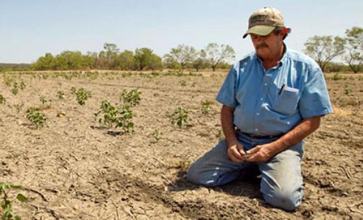 türkiye tarım ithalat