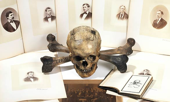 kuru kafa ve kemikler